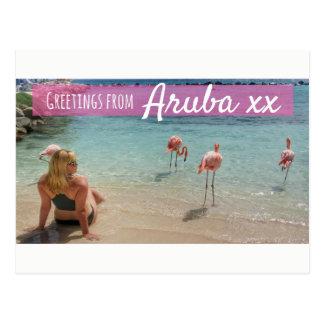 Cartão do feriado da praia do flamingo de Aruba Cartão Postal