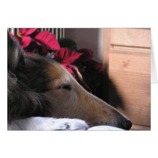 Cartão do feriado do Collie do sono