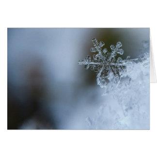 Cartão do feriado do floco de neve