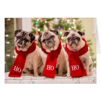 Cartão do feriado/Natal do Pug. Minnie, máximo e