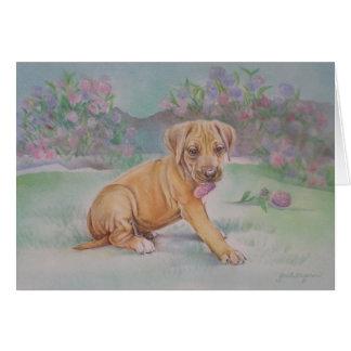 Cartão do filhote de cachorro de Rhodesian