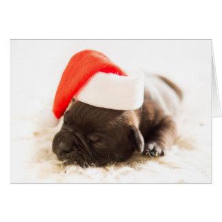 Cartão do filhote de cachorro do buldogue do Natal