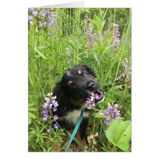 Cartão do filhote de cachorro e das flores