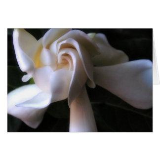 Cartão do Gardenia, com poesia