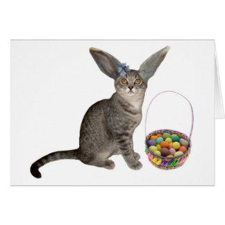Cartão do gatinho da páscoa