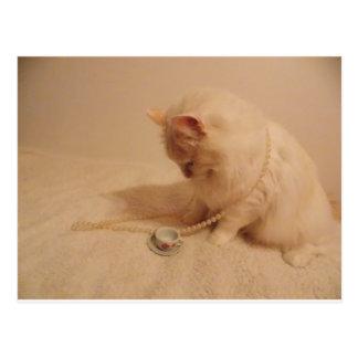 cartão do gatinho do copo n do tea party