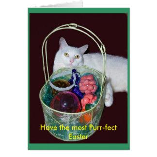 Cartão do gato da páscoa