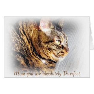 Cartão do gato de gato malhado do dia das mães de