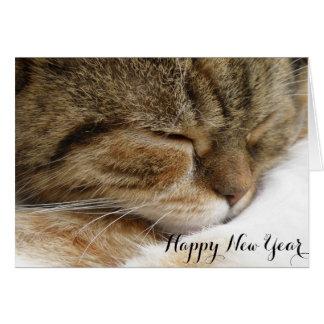 Cartão do gato do feliz ano novo