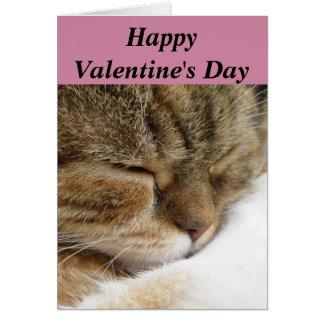 Cartão do gato do feliz dia dos namorados