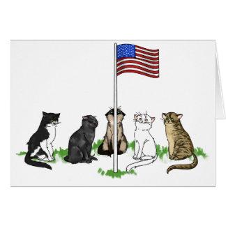 Cartão do gato do Memorial Day