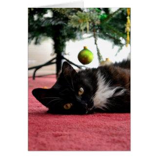Cartão do gato do Natal