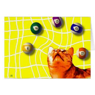 Cartão do gato dos bilhar
