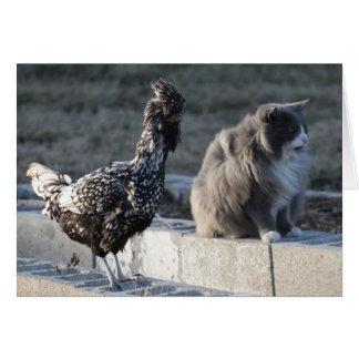 Cartão do gato e da galinha