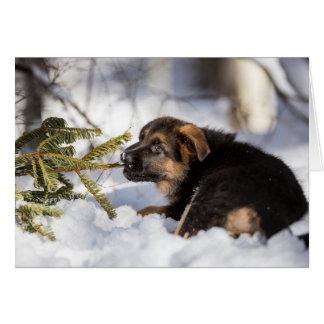 Cartão do german shepherd do Feliz Natal