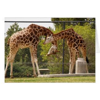 cartão do girafa do estiramento