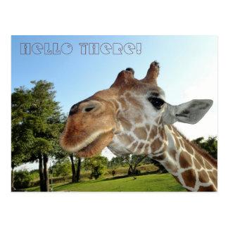 Cartão do girafa/olá! lá!
