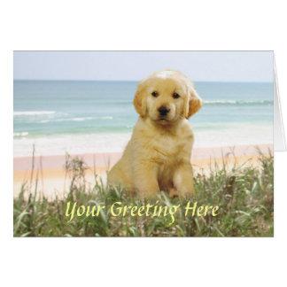Cartão do golden retriever