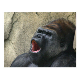 Cartão do gorila do canto