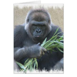 Cartão do gorila do Silverback
