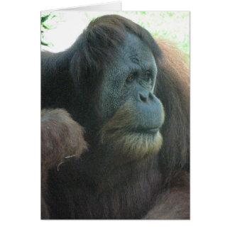 Cartão do grande macaco