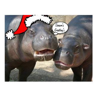Cartão do hipopótamo do papai noel do Natal