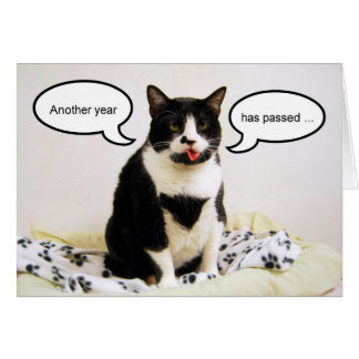 Cartão do humor do aniversário do gato do smoking
