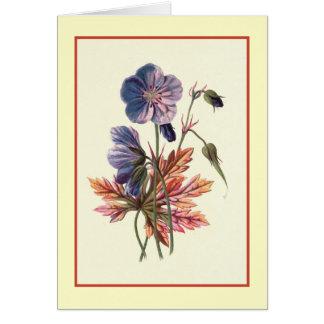 """Cartão Do """"ilustração botânica de Cranesbill prado"""""""