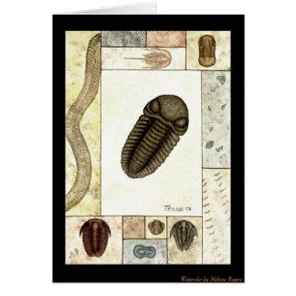 Cartão do impressão da arte - Trilobita