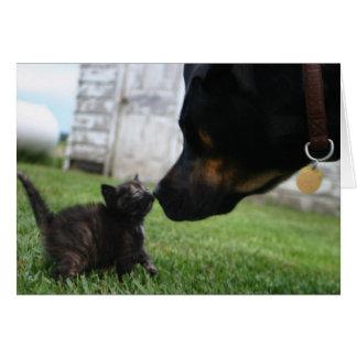 Cartão do incentivo do gatinho e do cão
