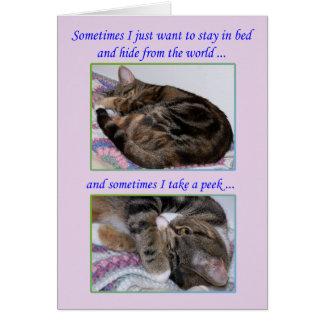 Cartão do incentivo, fotos de um gato