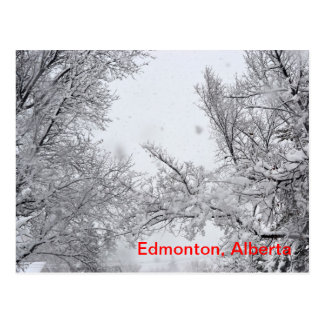 Cartão do inverno de Edmonton, Alberta