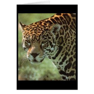 cartão do jaguar