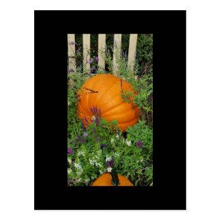 Cartão do jardim da abóbora de outono