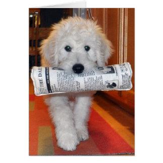 Cartão do jornal de Goldendoodle