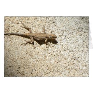 Cartão do lagarto do estuque