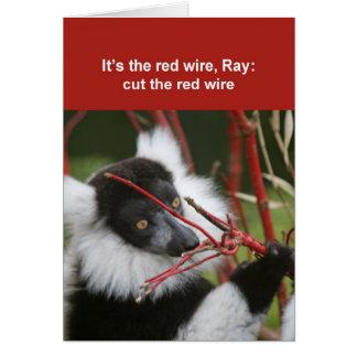 Cartão do lemur de Ruffed