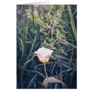 Cartão do lírio de Mariposa (vazio)