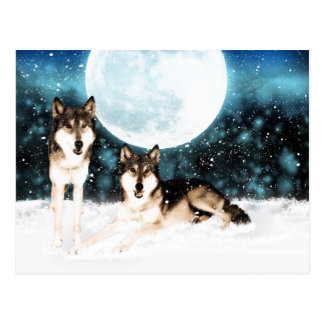 cartão do lobo da arte da fantasia do inverno do