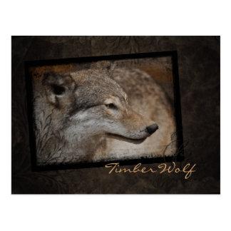 Cartão do lobo de madeira