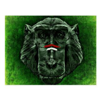 Cartão do macaco cartão postal