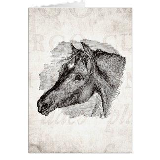 Cartão Do modelo inteligente do cavalo do vintage texto