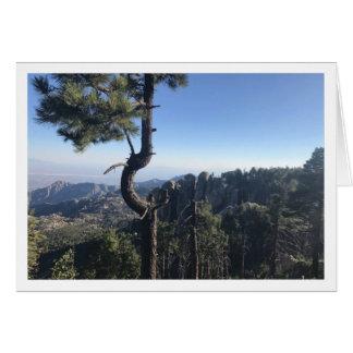 Cartão do Mt. Lemmon