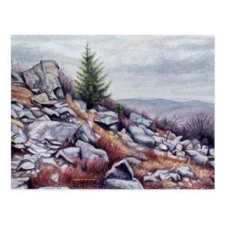 Cartão do Mt. Rogers