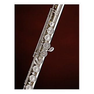 Cartão do músico do Flutist da flauta