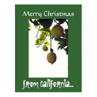 Cartão do Natal de Califórnia