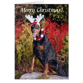 Cartão do Natal de Reindobe