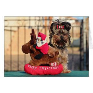 Cartão do Natal do animal de estimação do
