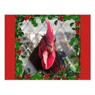 Cartão do Natal do azevinho do galo