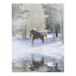 Cartão do Natal do cavalo